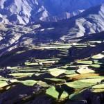 Ladakh05_1490402